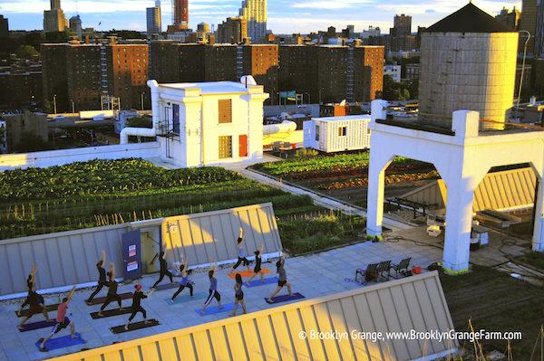 yoga+at+the+Brooklyn+Navy+Yard+farm